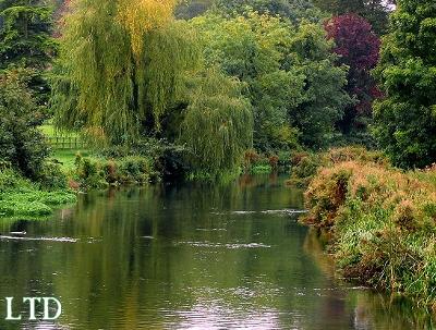 Les Jardins Anglais Fausse Irr Gularit Vraie Domestication